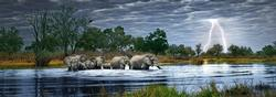 Herd of Elephants Photography Panoramic Puzzle