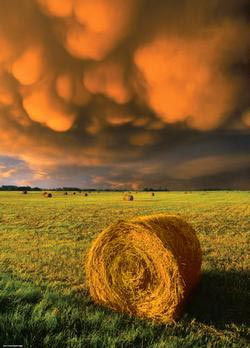 Rising Storm (Power of Nature) Photography Jigsaw Puzzle
