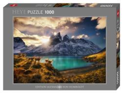 Guanacos Nature Jigsaw Puzzle