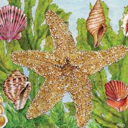 Starfish Kelp Seascape / Coastal Living Jigsaw Puzzle