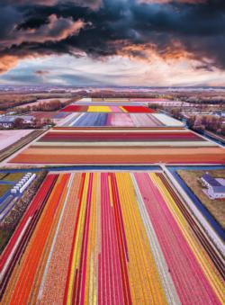Blanc Series: Infinity Fields of the Netherlands Europe Jigsaw Puzzle