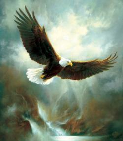 Eagle Flight Eagles Jigsaw Puzzle
