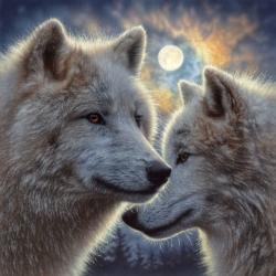 Moonlight Mates Night Jigsaw Puzzle