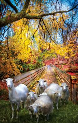Sheep Crossing Fall Jigsaw Puzzle