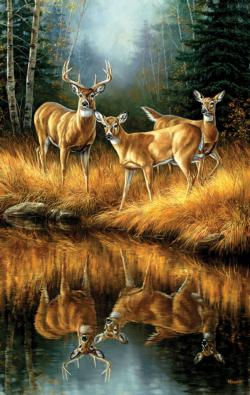 Whitetail Reflections Animals Jigsaw Puzzle