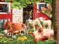 Lazy Afternoon on the farm Pig Jigsaw Puzzle