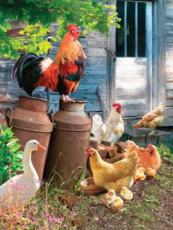 Hen Run Chickens & Roosters Jigsaw Puzzle