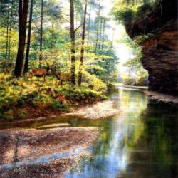 Quiet Forest Lakes / Rivers / Streams Jigsaw Puzzle