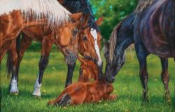 A Welcome New Arrival Horses Jigsaw Puzzle