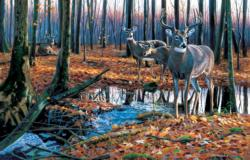 After the Rain Wildlife Jigsaw Puzzle