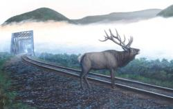 Elk Tracks Trains Jigsaw Puzzle