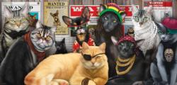 Cat Lineup Cats Panoramic Puzzle