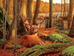 Where Sleeping Deer Lie Forest Jigsaw Puzzle