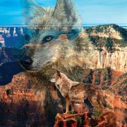 Haunted Canyon Landscape Jigsaw Puzzle