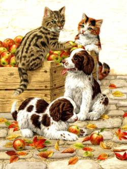 Box of Apples Dogs Jigsaw Puzzle