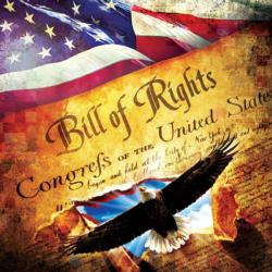 The Bill of Rights - Scratch and Dent United States Jigsaw Puzzle