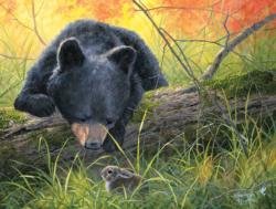 The Discovery Bears Jigsaw Puzzle
