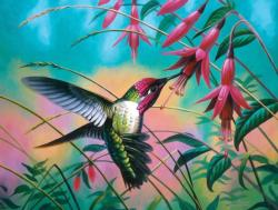 Hummingbird Haven Flowers SunsOut New Arrivals
