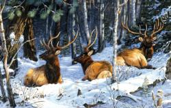 Full House Three Kings Two Jacks Forest Jigsaw Puzzle