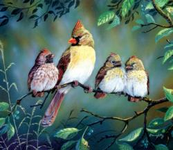 Always in Trouble Birds Jigsaw Puzzle
