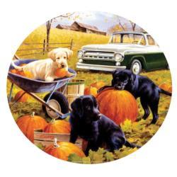 Pumpkin Patch Fall Round Jigsaw Puzzle