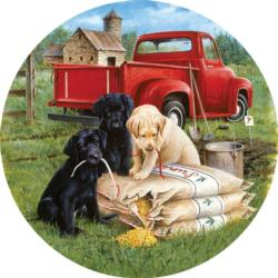 Seeds of mischief Dogs Round Jigsaw Puzzle