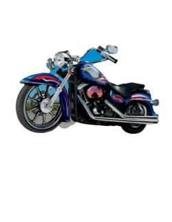 Freedom Cycle Motorcycles Jigsaw Puzzle