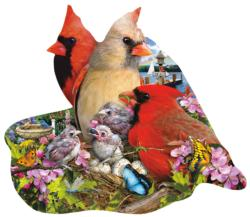 Spring Cardinals Butterflies and Insects Shaped