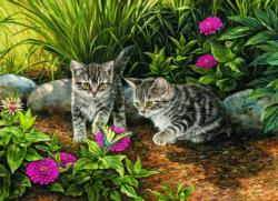 Double Trouble Kitten Kittens Jigsaw Puzzle