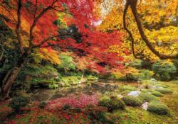 Autumn Park Forest Jigsaw Puzzle