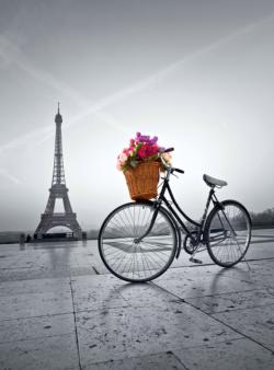 Romantic Promenade in Paris Eiffel Tower Jigsaw Puzzle