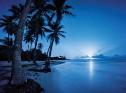 Rising Moon Seascape / Coastal Living Jigsaw Puzzle
