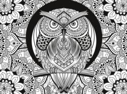 Owl (3D Colour Therapy) Adult Coloring Coloring Puzzle
