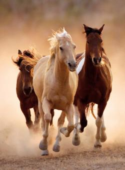 Running Horses Horses Jigsaw Puzzle
