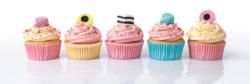 Licorice Cupcakes Sweets Panoramic Puzzle