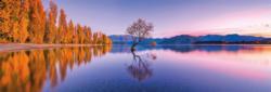 Lake Wanaka Tree Lakes / Rivers / Streams Panoramic Puzzle