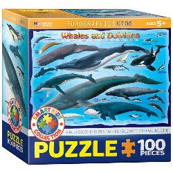 Whales & Dolphins Educational Jigsaw Puzzle