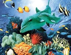 Color Reef (Mini) Under The Sea Miniature Puzzle