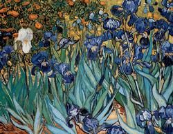 Irises (Mini) Van Gogh Irises Miniature