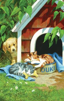 A Quick Nap Kittens Jigsaw Puzzle