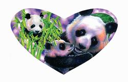 Panda Love Pandas Shaped