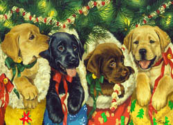 Stocking Puppies Christmas Jigsaw Puzzle