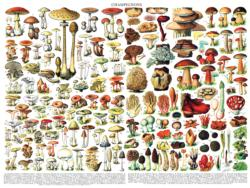 Mushrooms ~ Champignons Collage Jigsaw Puzzle