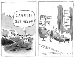 Lassie Get Help (Mini) Cartoons Miniature