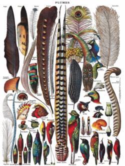 Feathers Birds Jigsaw Puzzle