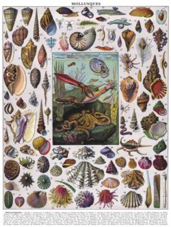 Mollusks Collage Impossible Puzzle