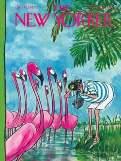 Flamingo Photographer Magazines and Newspapers Jigsaw Puzzle