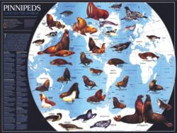 Pinnipeds Pattern / Assortment Jigsaw Puzzle
