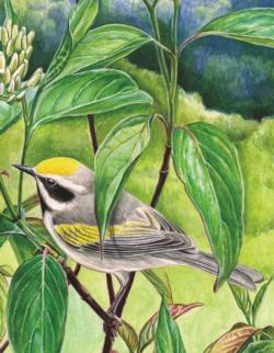Golden-Winged Warbler Birds Miniature Puzzle