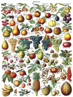 Fruits Food and Drink Jigsaw Puzzle